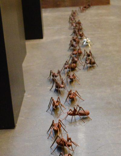 Die Ameisenstrasse